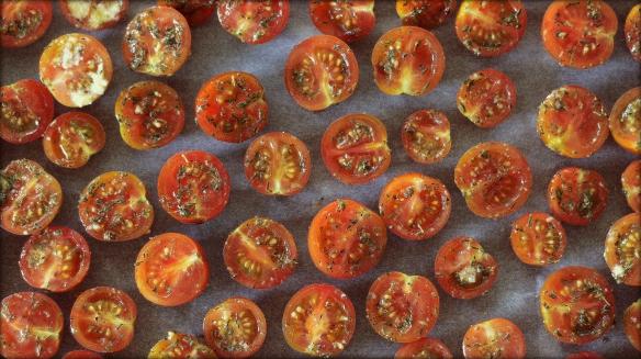 tomat12